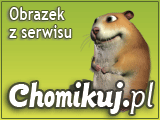Chip i Dale Brygada RR 47 - Przez Bar Do Banku.avi